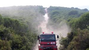 Yalova Fıstıklı'daki Orman Yangını Söndürüldü