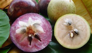 Dünyanın En İlginç Meyveleri