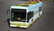 İETT'den Botanik Bahçeli Otobüs: Botobüs