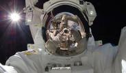 Uzayda Çekilen Selfie'ler Bir Araya Getirildi