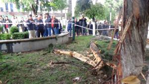 Hatay'da Parka Yıldırım Düştü: 1'i Ağır 3 Öğrenci Yaralandı