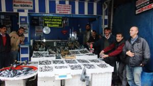 Bafra'da Hamsi Tezgahta 5 TL'den Satılıyor