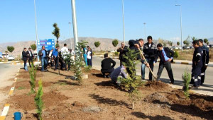 Şırnak'ta Havalimanına 7 Bin Fidan Dikildi