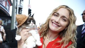İnternet Fenomeni Grumpy Cat, Sahibini İhya Etti