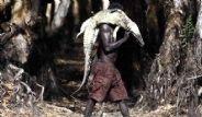 Aborjinler Vahşi Hayvanları Avlarken Görüntülendi