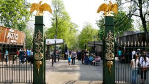 Amsterdam Artis Hayvanat Bahçesi'ni 1,3 Milyon Kişi Ziyaret Etti