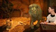 Hayvanat Bahçesinin İçine Otel Açtılar