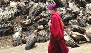 Tibet'te Yaşayan Budistler Ölülerini Akbabalara Yediriyor