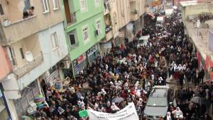 Şırnak'ta Öcalan'a Özgürlük Yürüyüşü