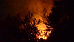 Yakakent'te Orman Yangını Sürüyor