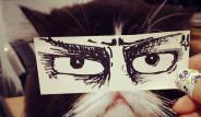 Anime Gözlü Kedileri Gördünüz Mü?