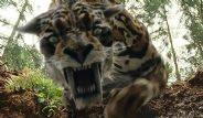 Diriltmek İstenilen Nesli Tükenmiş Hayvanlar