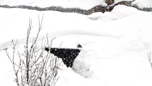 Karlıova'da Okullara 2 Gün Kar Tatili (2)