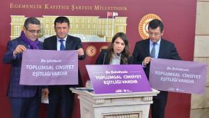 CHP'nin 'Mor Bayrak' Projesi