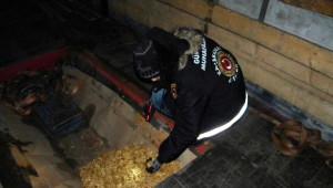 Hamzabeyli'de 235 Kilo Kaçak Ceviz Ele Geçti