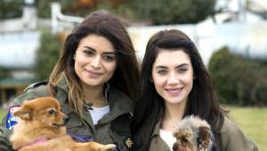 Fulya Zenginer; Köpek Sahibi Olmak, Çocuk Sahibi Olmak Gibi