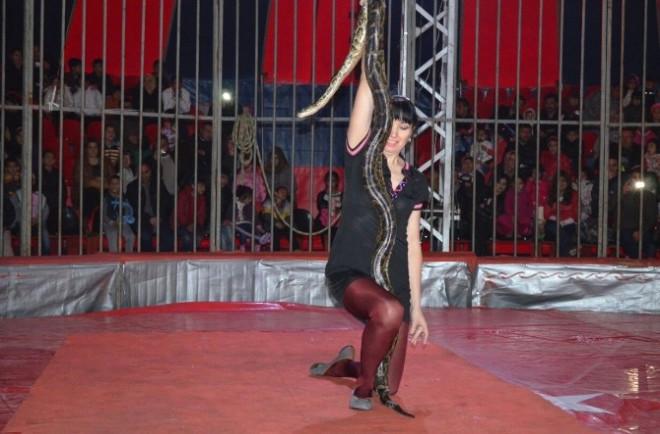 Ceyhan'da Arena Sirki'ne Yoğun İlgi