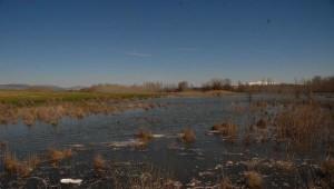Baraj Kapakları Açıldı, Tarım Arazilerini Su Bastı