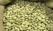 Yeşil Kahve Hakkında Bilinmeyenler