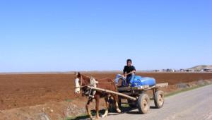 Şanlıurfa'da Yukarı Deren Mahallesi Suyunu 7 Km Uzaktan Getiriyor
