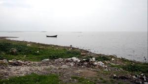 Kuluçka Dönemindeki Pelikanlar, Köy Yakınlarında Avlanıyor