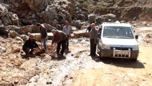 Yolları Onarılmayan Köylüler, Yola Sebze Ekti