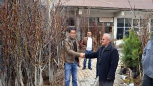 Adilcevaz'da Fidan Satışları Başladı