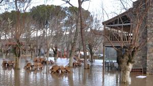 Denizli'de Dereler Taştı, Evleri Su Bastı, Tarım Arazileri Zarar Gördü (3)