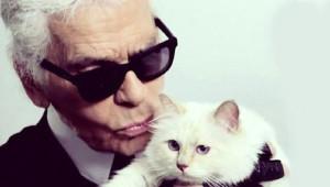Kedi Choupette, Cara Delevingne'yi Solladı