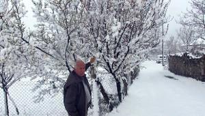 Elmadağ'da Kar Fırtınası Etkili Oldu
