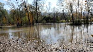 Pazar'da Tarım Arazileri Su Altında Kaldı