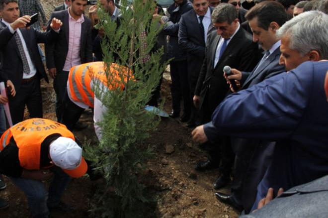 Urfa'da Eski Stat Yerine Park Yapmak İçin Dikilen Ağaçlar Bir Gün Sonra Söküldü