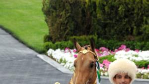 Ahal Teke Atları Güzellik Yarışması Düzenlendi