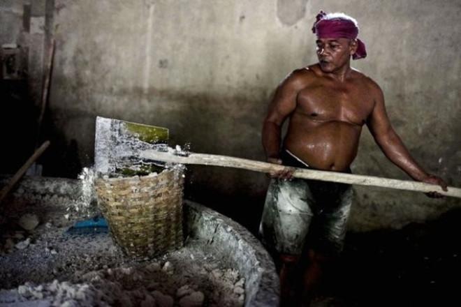 Endonezya Mide Bulandıran Makarna Fabrikası