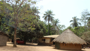 Gineli Köylüler, Evlerini Termit Yuvalarını Örnek Alarak Yapıyor
