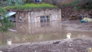 Tuzluca'da Sağanak Yağış Su Baskınlarına Neden Oldu