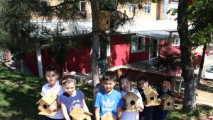 Fatih Koleji'nden 'Sıcak Yuvam, Kuş Evim' Proje Yarışması