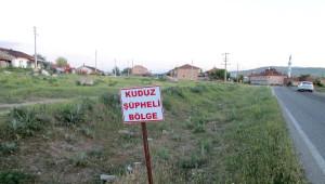 Kuduz Vakası Tespit Edilen Köy Karantinaya Alındı