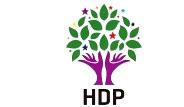 HDP'nin Vekil Çıkaramadığı İlller