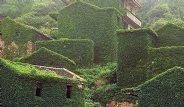 Çin'deki Gizli Yeşil Vadi