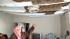 Böbrek Hastası Yaşlı Kadın Çatısı Çöken Evde Hayat Mücadelesi Veriyor