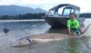 9 Yaşındaki Çocuk, 270 Kiloluk Balık Yakaladı