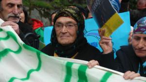 Çamlıhemşin Halkı, Yeşil Yol İçin Toplandı