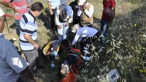 Otomobil Şarampole Takla Attı: Üç Yaralı