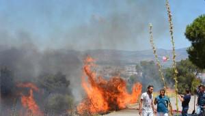 Dikili'de Ağaçlık Alanda Korkutan Yangın