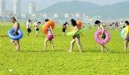 Çin'in Sahillerini Yosunlar Sardı