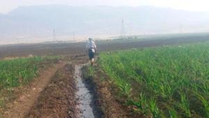 Pkk, Silopi'de Kerkük-Yumurtalık Boru Hattı'na Sabotaj Yaptı