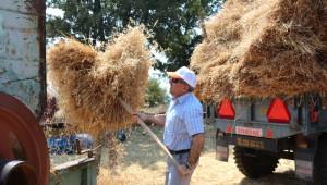 Milletvekili Özdağ Buğday Hasadı Yaptı