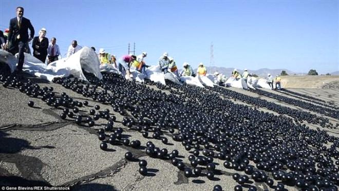 Los Angeles'i Susuzluktan Kurtarmak İçin Baraja Tam 96 Milyon Plastik Top Attılar