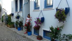 Bozcaada Sokaklarında İlginç Saksılar